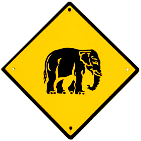 پرونده:Elephant crossing.jpg