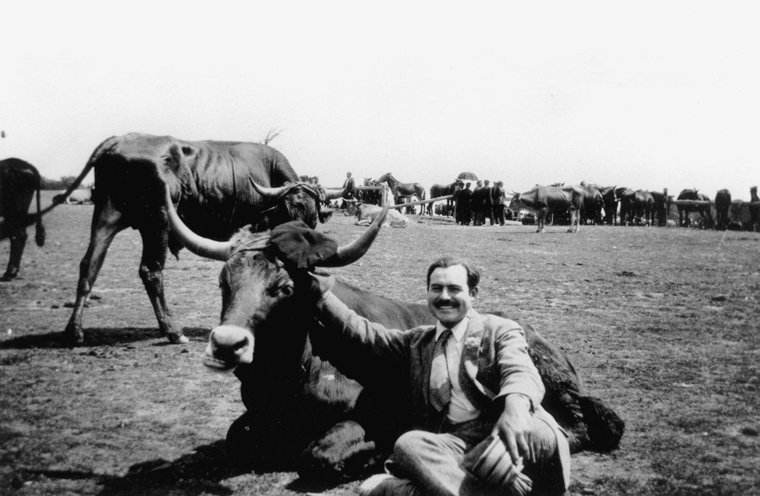Ernest Hemingway with a bull, Spain, 1927