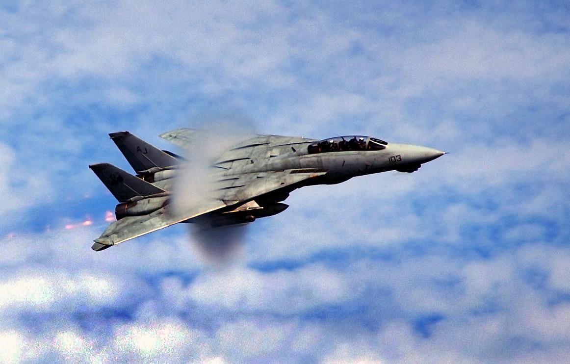 Maqueta en cartón avión F-14 , fácil de crear