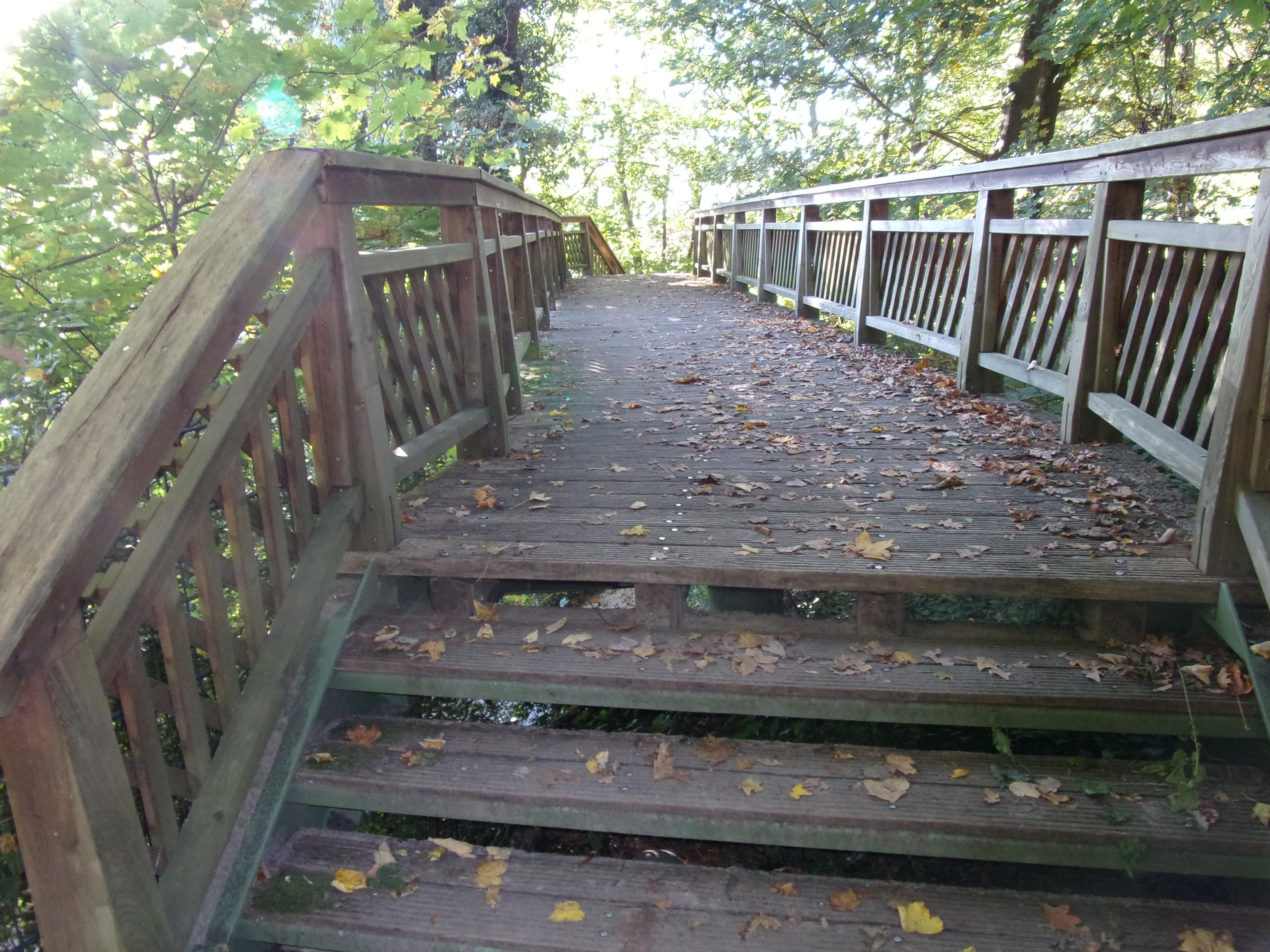 Fileholzbrücke Im Römischen Garten 2jpg Wikimedia Commons