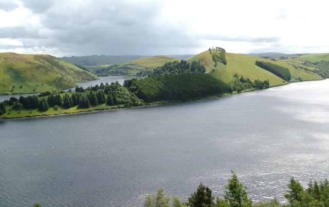 Llyn Clywedog - geograph.org.uk - 143689