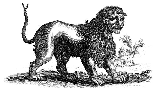 An image of a manticore, a mythical beast with a human head, the body of a lion, and a stinging tail.