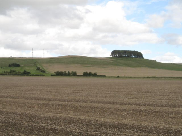 Morgan's Hill from Wessex Ridgeway - geograph.org.uk - 57843