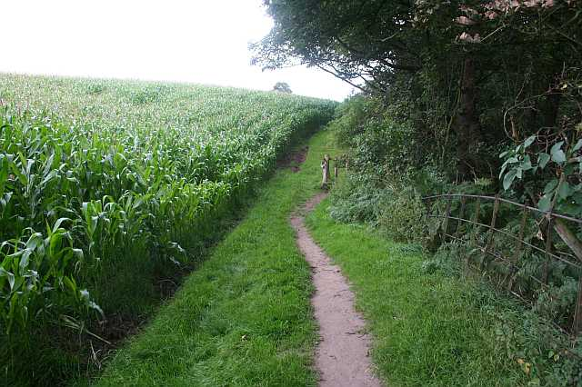 Permitted path from Hare Hill to Alderley Edge - geograph.org.uk - 1600675