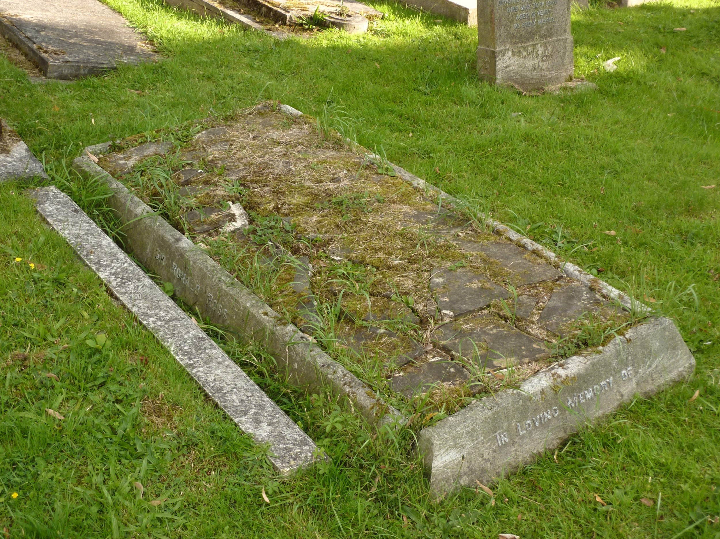 A horizontal gravestone, badly dilapidated and with grass growing among the cracks