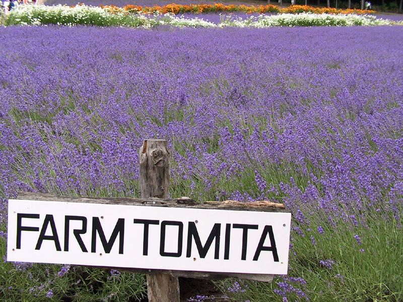 https://upload.wikimedia.org/wikipedia/commons/b/b6/Sign_of_Farm_Tomita.jpg