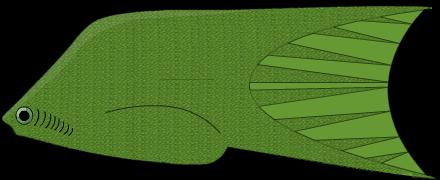 Sphenonectris