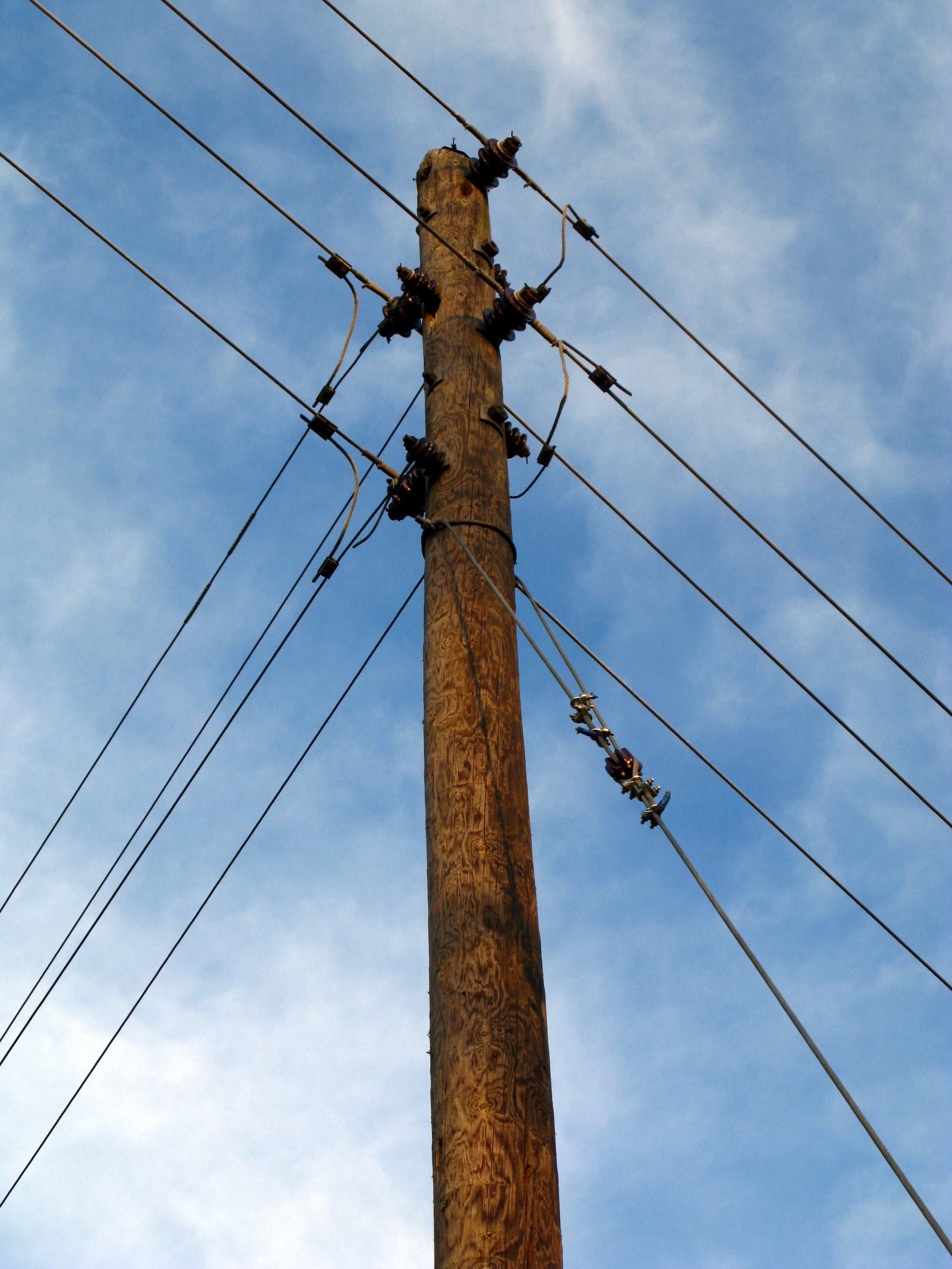 mast pictures