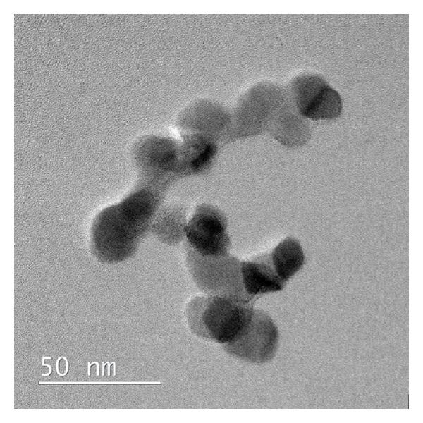 File:TEM-image-of-Degussa-P25-TiO-sub2sub-nanoparticles.jpg
