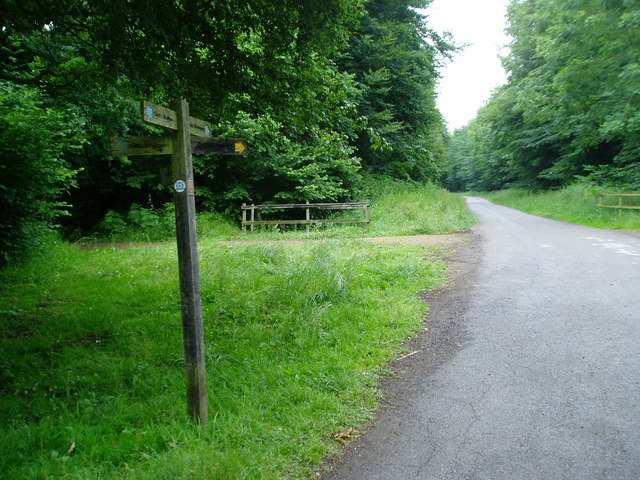 The Monarch's Way in Upper Wepham Wood - geograph.org.uk - 858980