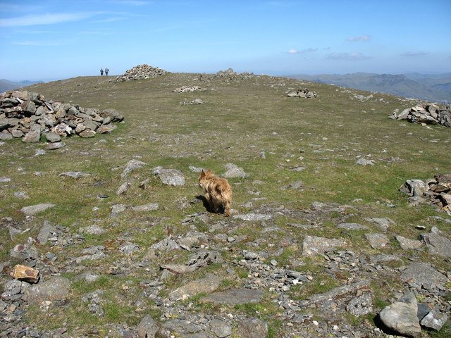 The Summit Plateau of Moel Hebog - geograph.org.uk - 234338