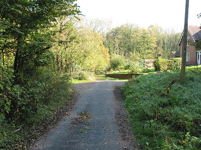 The end of the road in Highnam Woods - geograph.org.uk - 591265