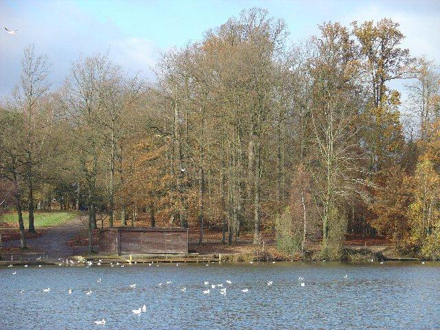 Tilgate Lake, Tilgate Park, Crawley - geograph.org.uk - 22765