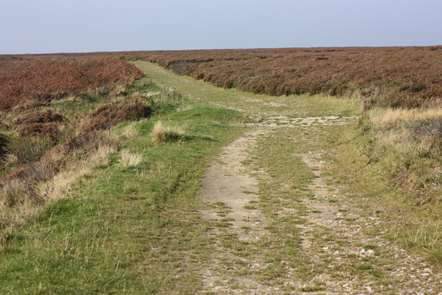 Towards Cross Dykes - geograph.org.uk - 986814
