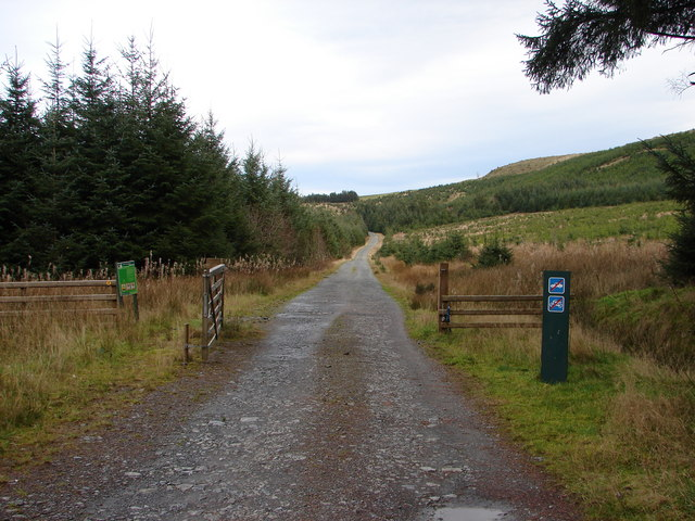 Track in Hafren Forest - geograph.org.uk - 761943