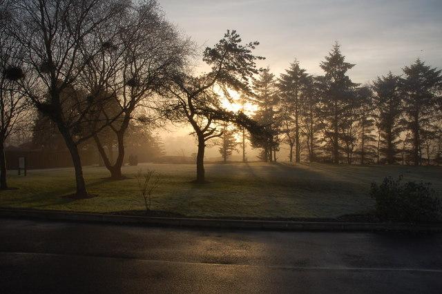 File:Trees, mist, and sun. The Blair, Auchentiber, Ayrshire - geograph.org.uk - 1617756.jpg