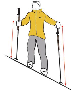 Using Trekking Poles