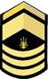 UA-OR9-MMST-NSB-SP (2016).png