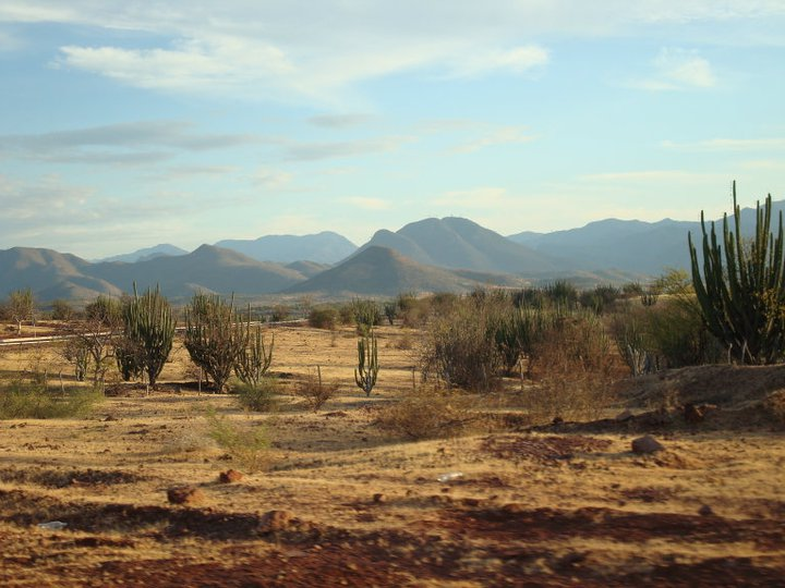Desert Region Of California Natural Resources