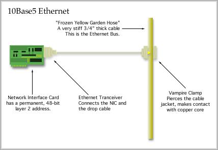 Image result for 10 base 5