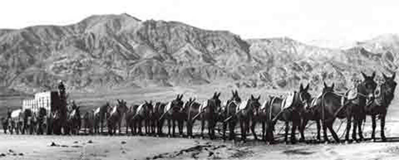 Twenty-mule team - Wikipedia, the free encyclopedia