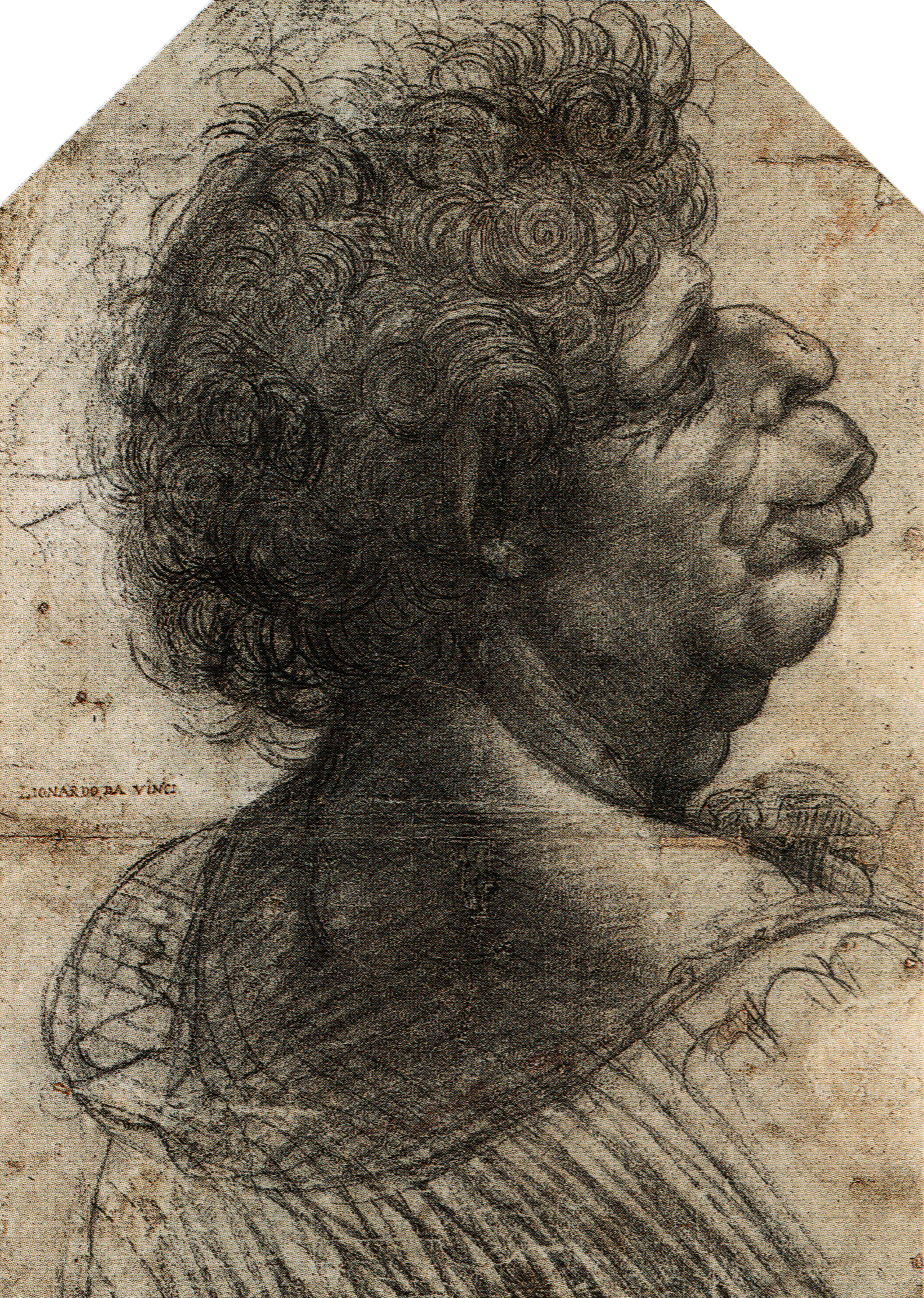 """Grotesque"" by Leonardo Da Vinci"