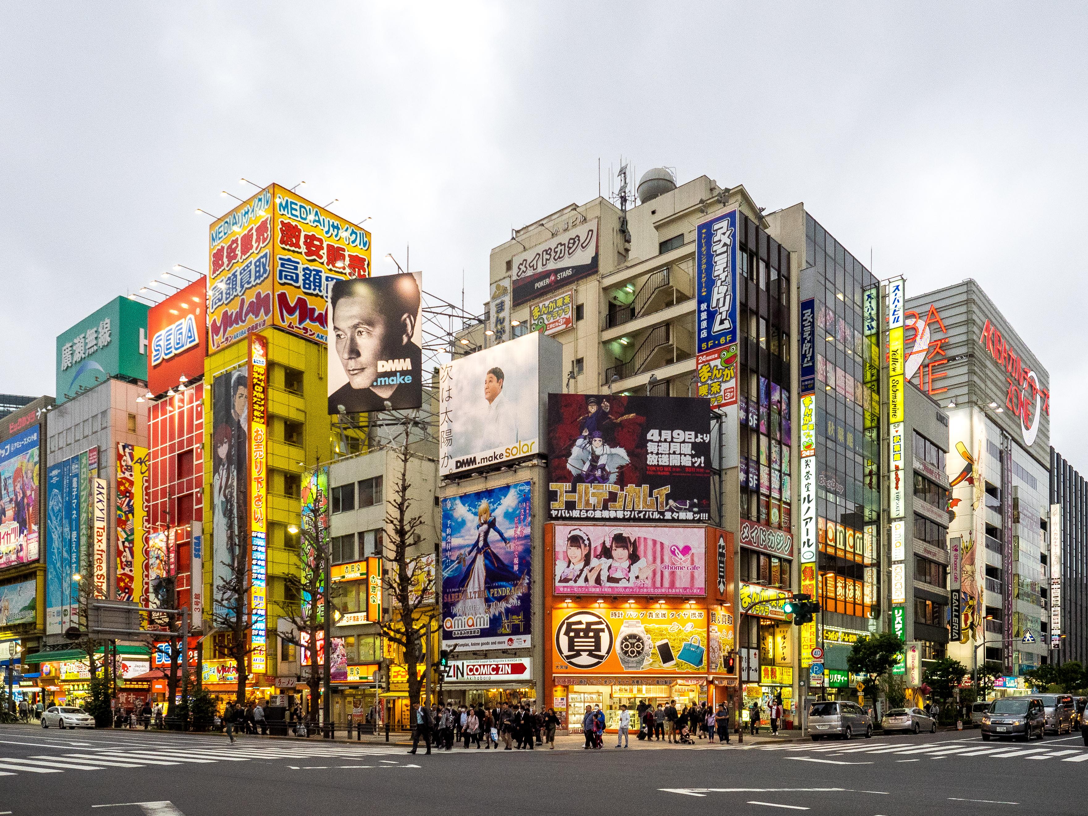 Akihabara Crossing