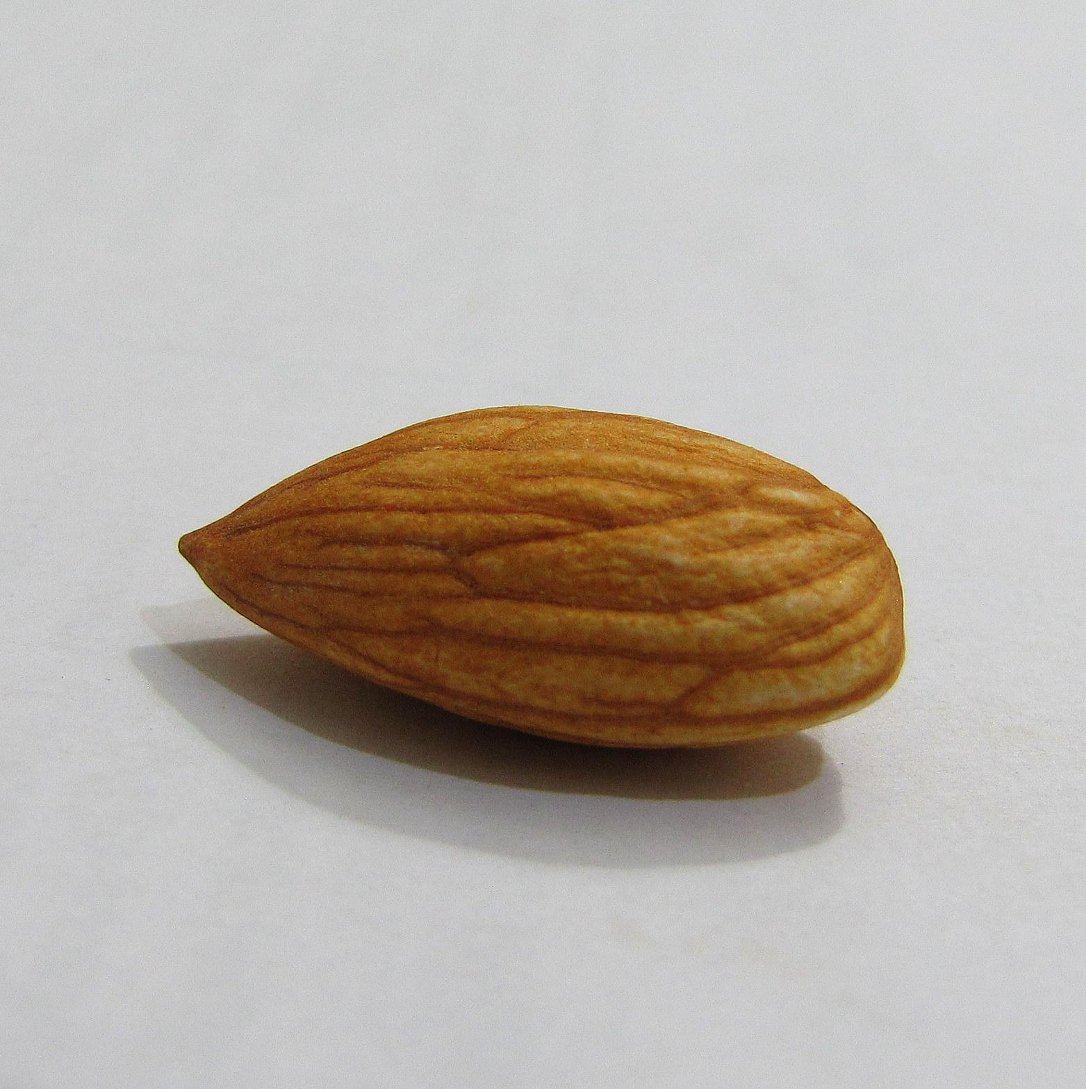One Almond Almond