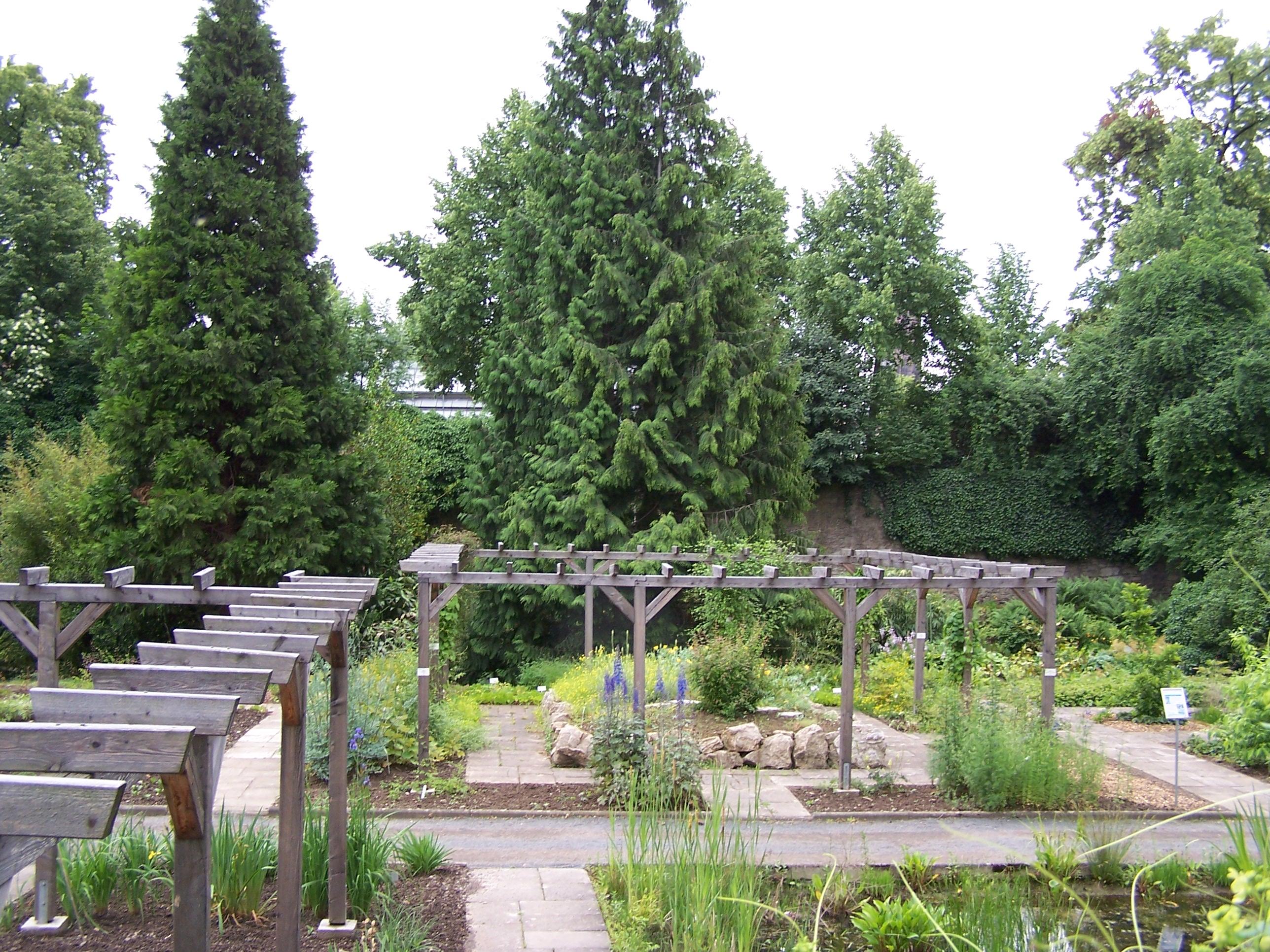Filealter Botanischer Garten Der Universität Göttingen 002jpg