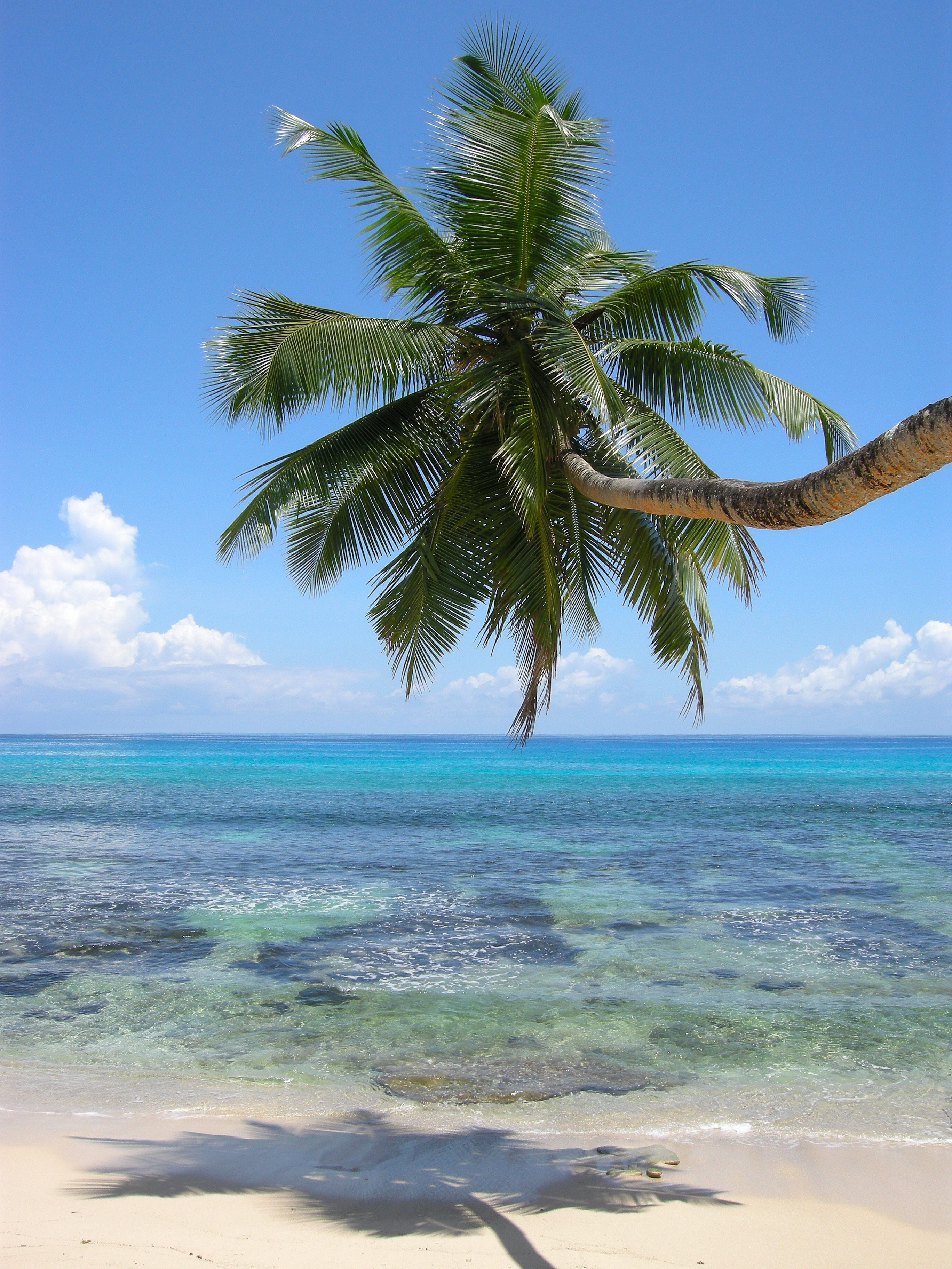 http://upload.wikimedia.org/wikipedia/commons/b/b7/Anse_Takamaka-Mah%C3%A9-Seychelles.jpg