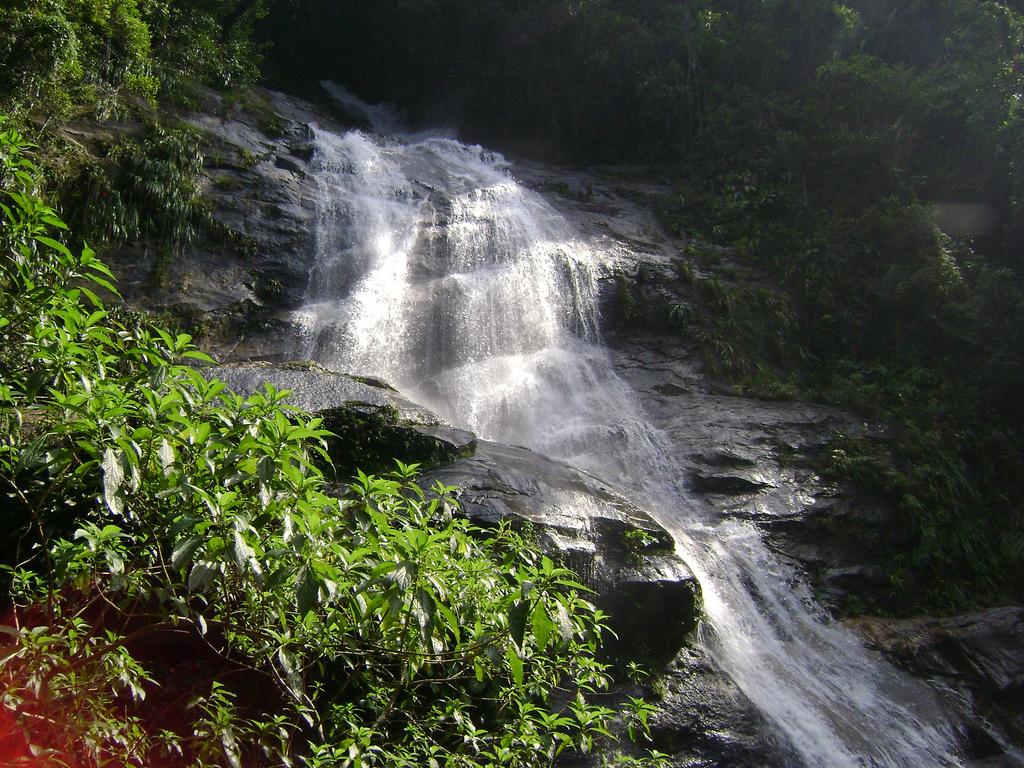 Rio De Janeiro Natural Resources