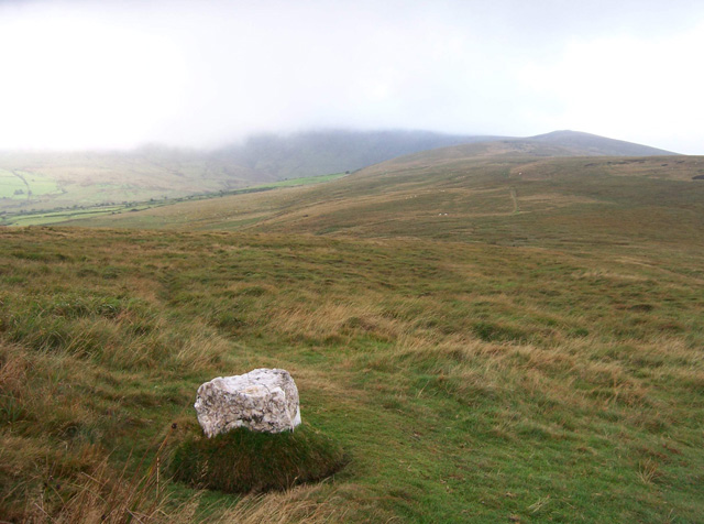 Carn Siân, Preseli Mountains - geograph.org.uk - 259497