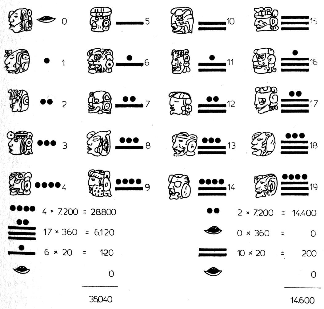 7c9f5808e8 File Dalle dita al calcolatore fig 075.jpg - Wikimedia Commons