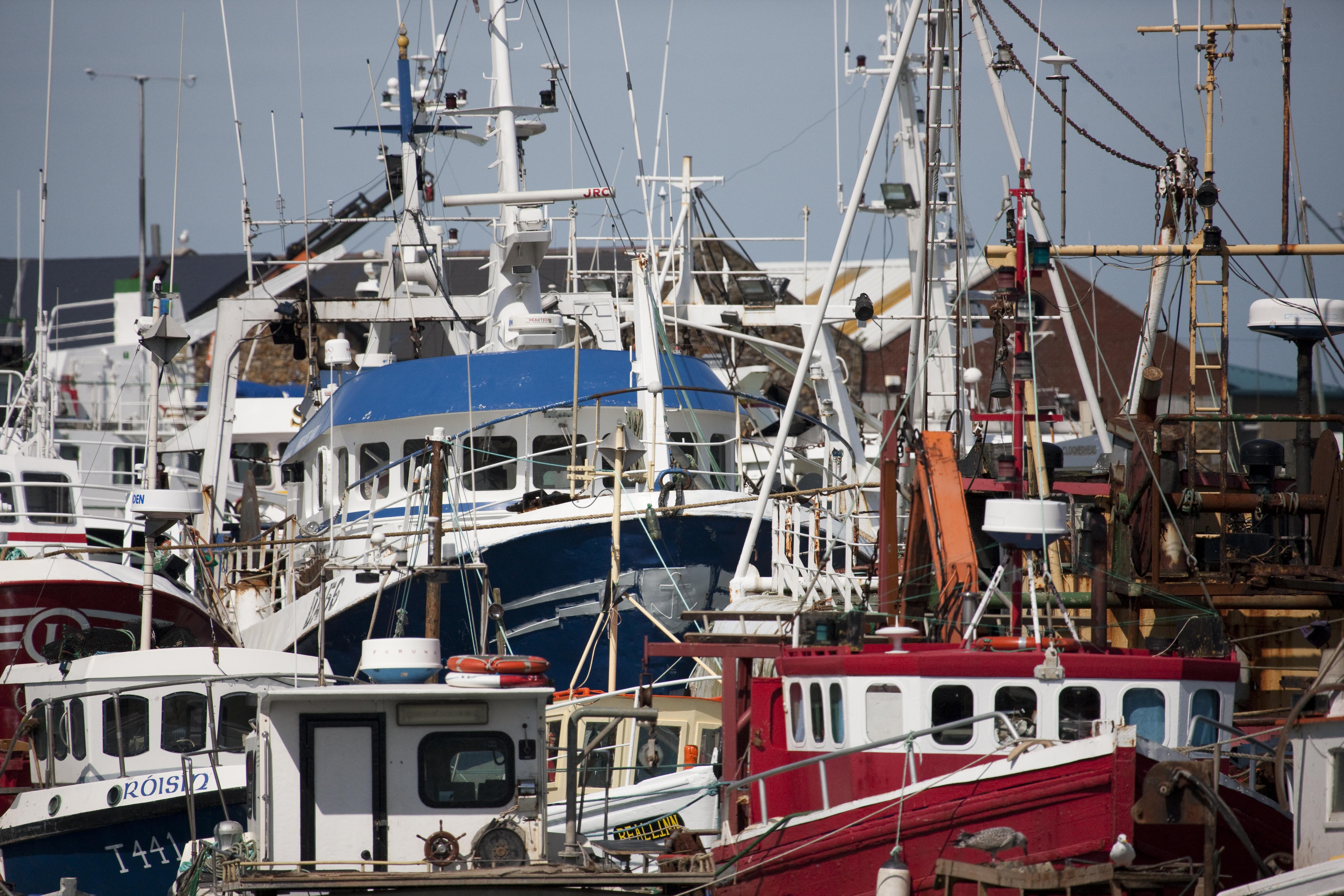 Fishing Fleet - Howth.jpg