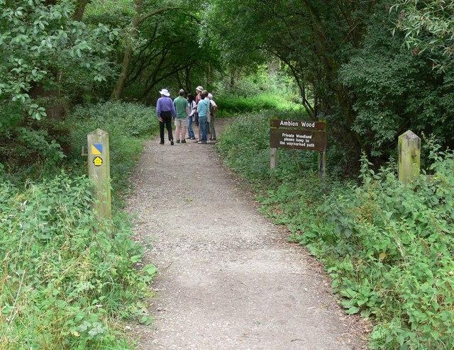 Footpath through Ambion Wood - geograph.org.uk - 918494