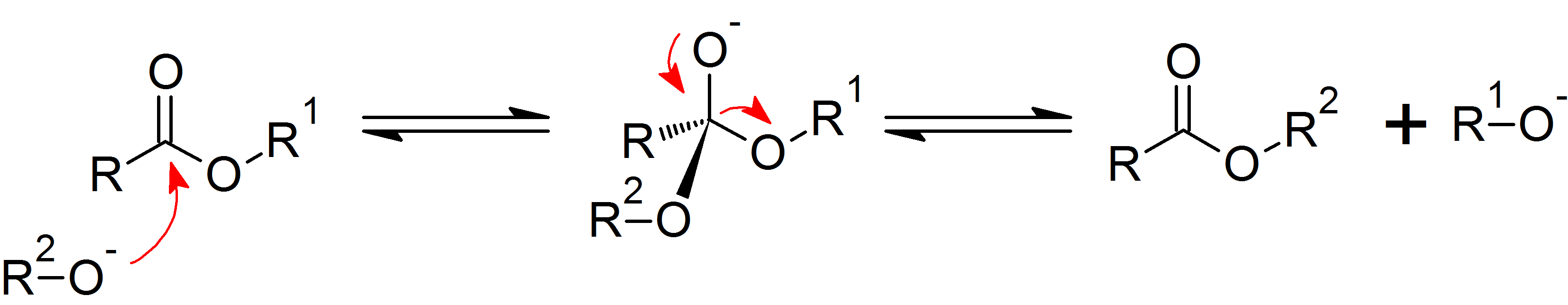synthesis of oils phospholipids and steroids