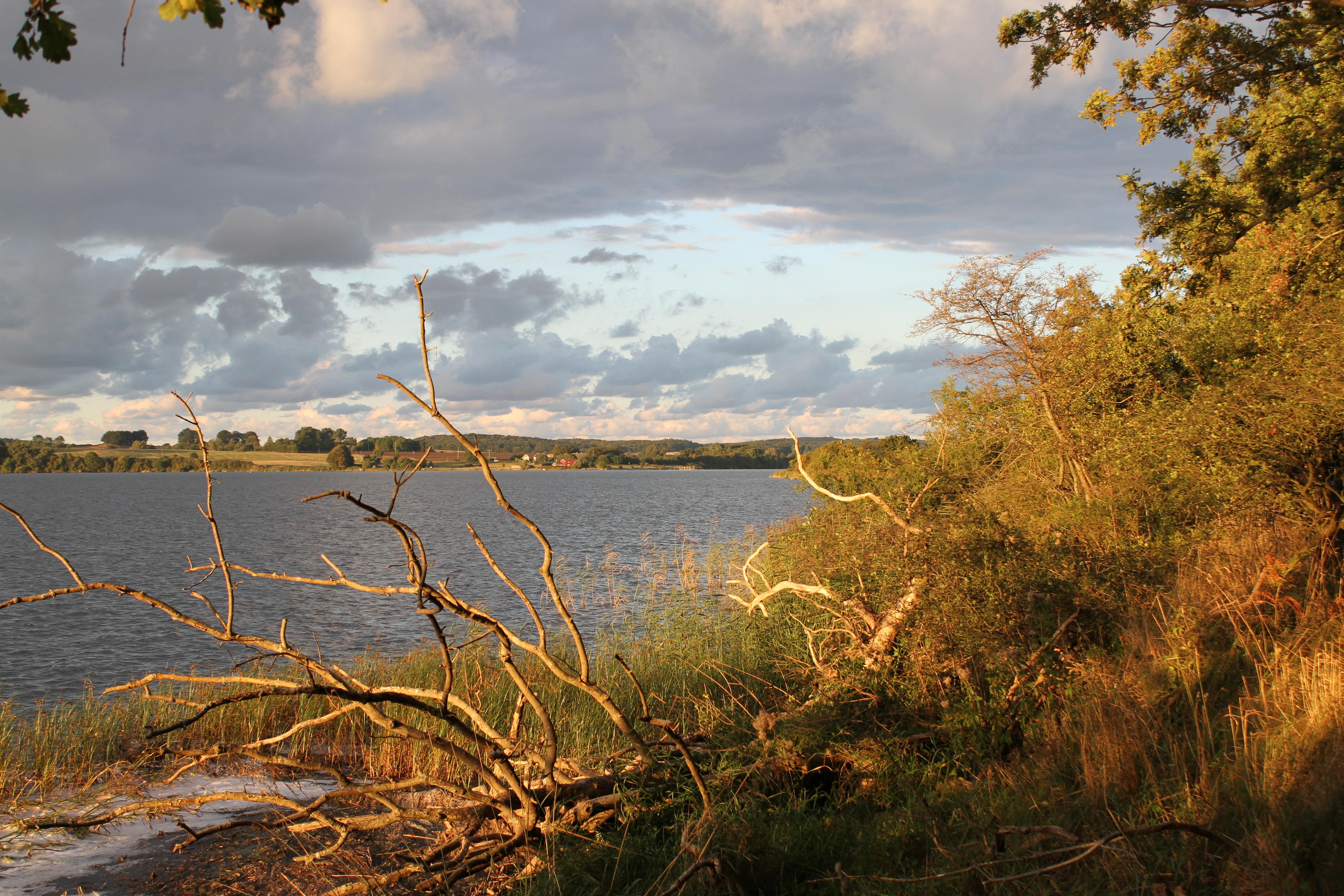 File Good Morning Nature Jpg Wikimedia Commons