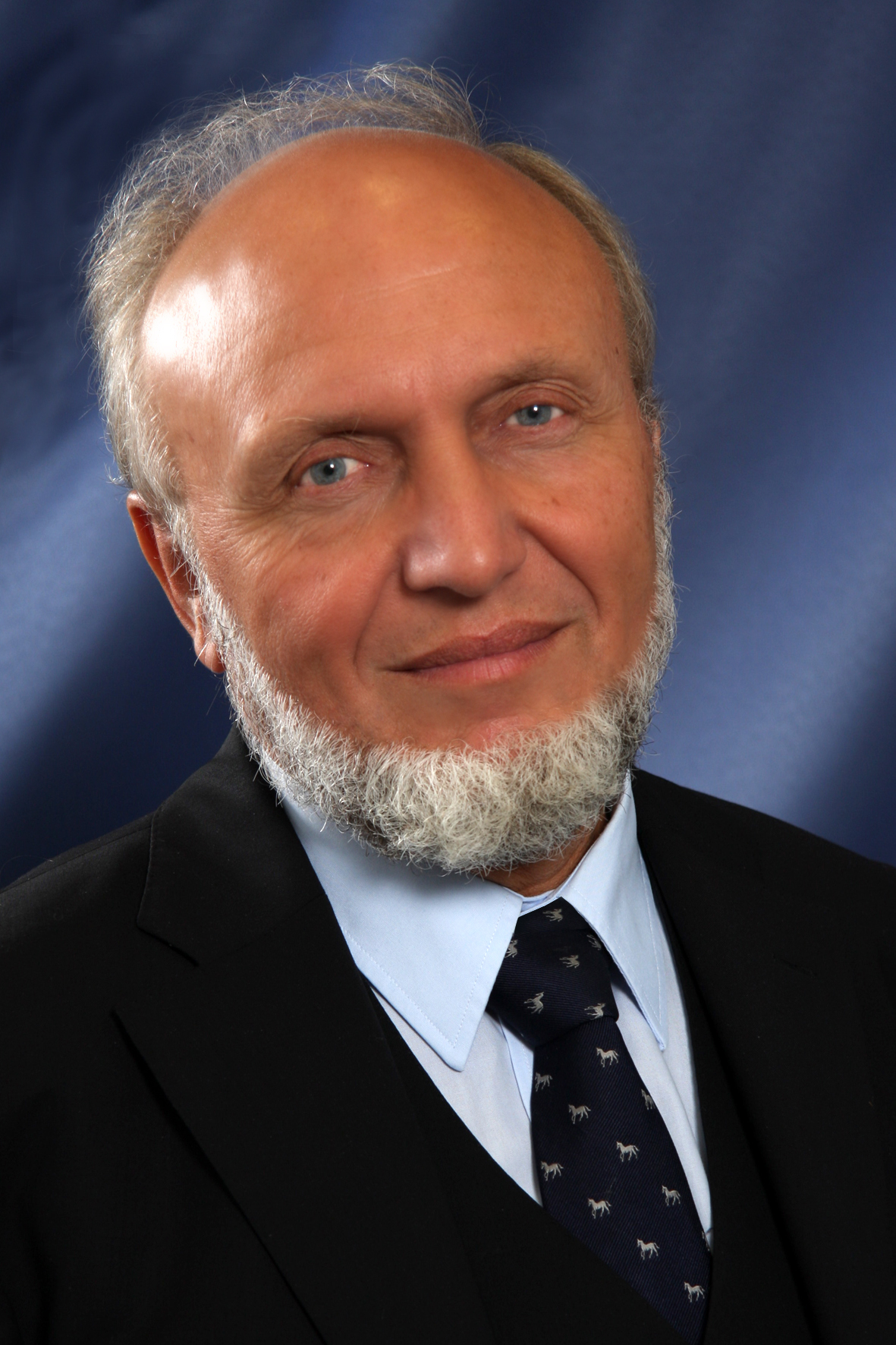 hans werner sinn wikipedia. Black Bedroom Furniture Sets. Home Design Ideas