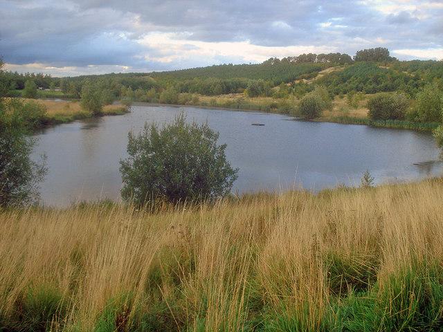 Horseshoe Lake - geograph.org.uk - 1499886