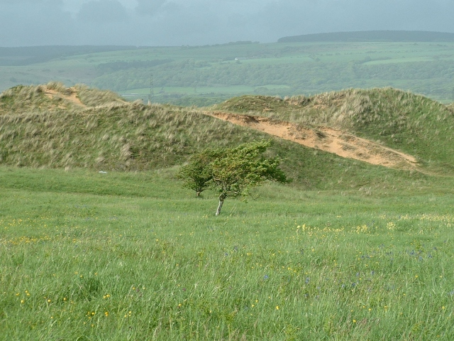 Kenfig Dune - geograph.org.uk - 172132