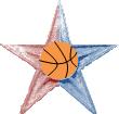 NBA Barnstar.png