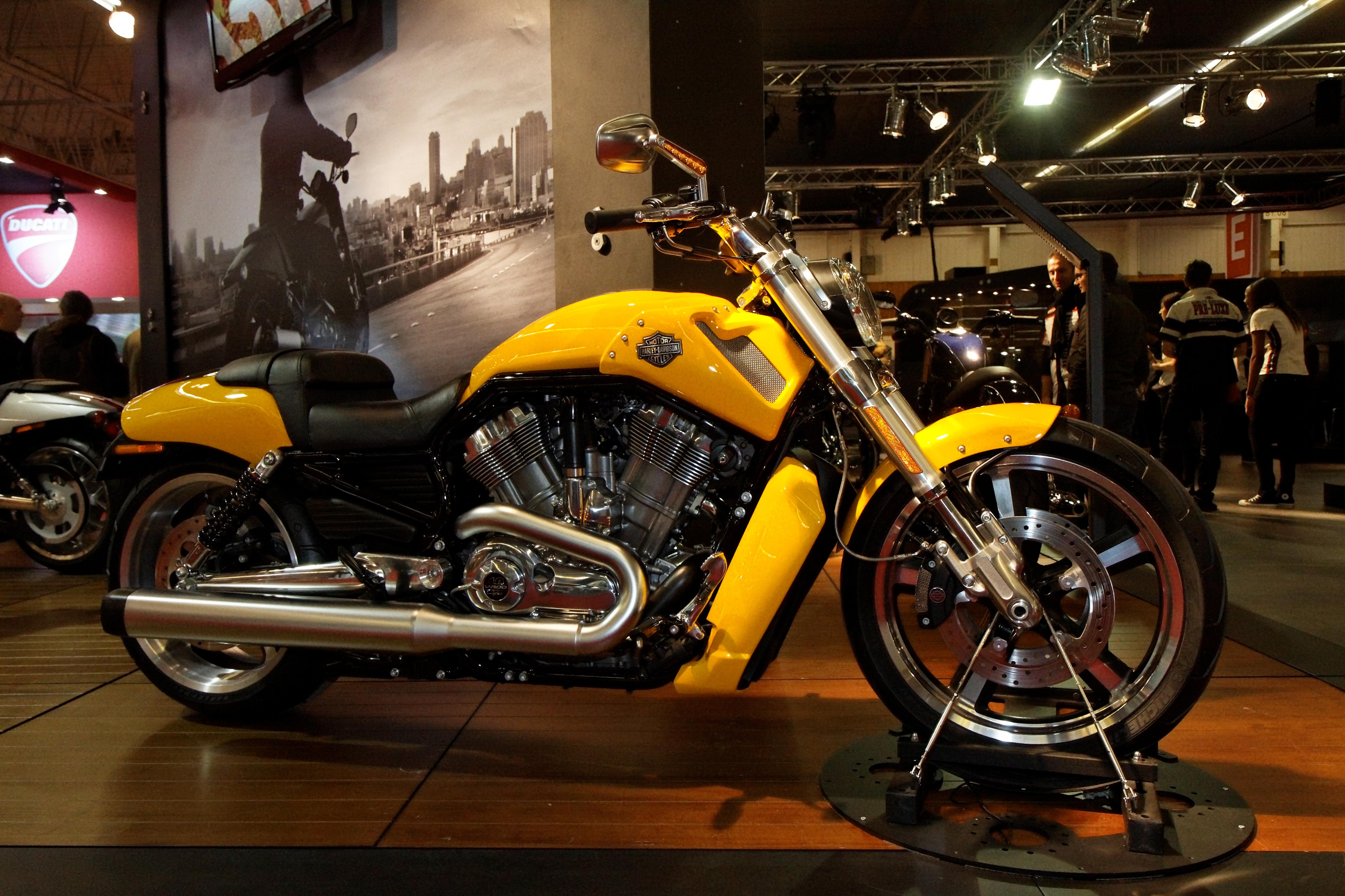 V Rod Muscle Harley Davidson Sale