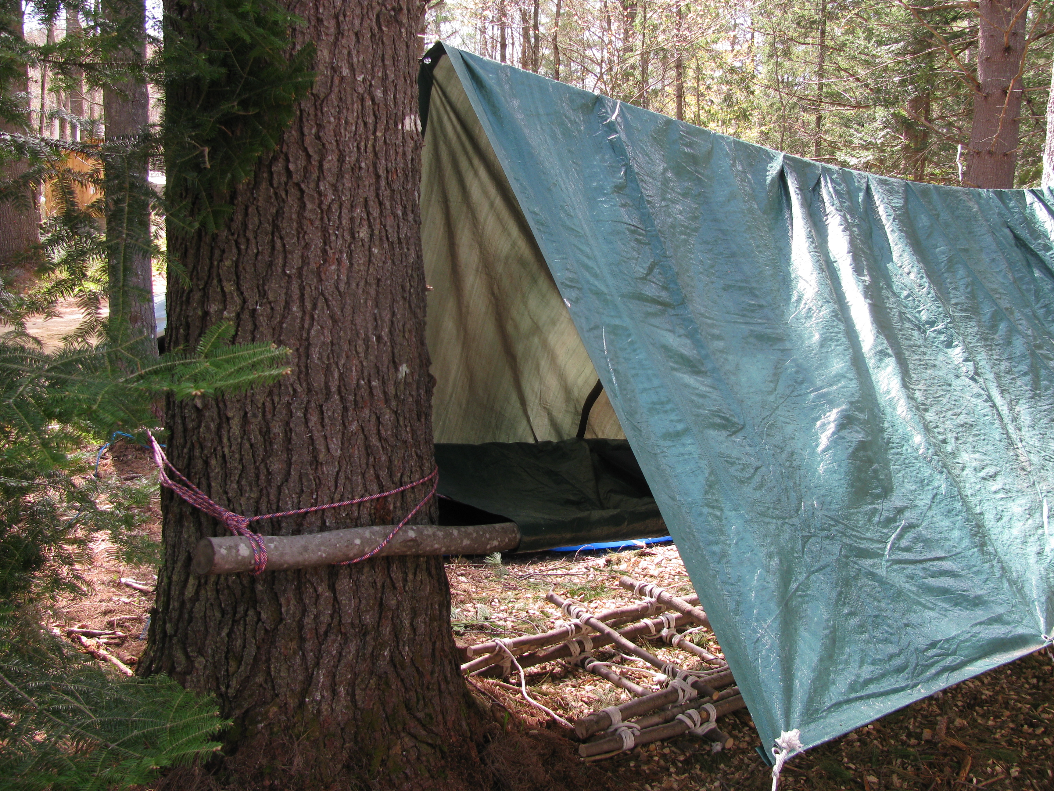 FilePole tarp and rope shelter 4855.JPG & File:Pole tarp and rope shelter 4855.JPG - Wikimedia Commons