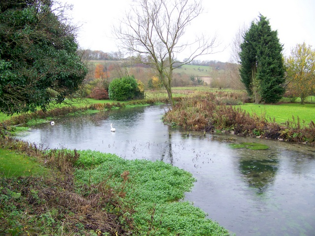 River Kennet near Mildenhall - geograph.org.uk - 1591990