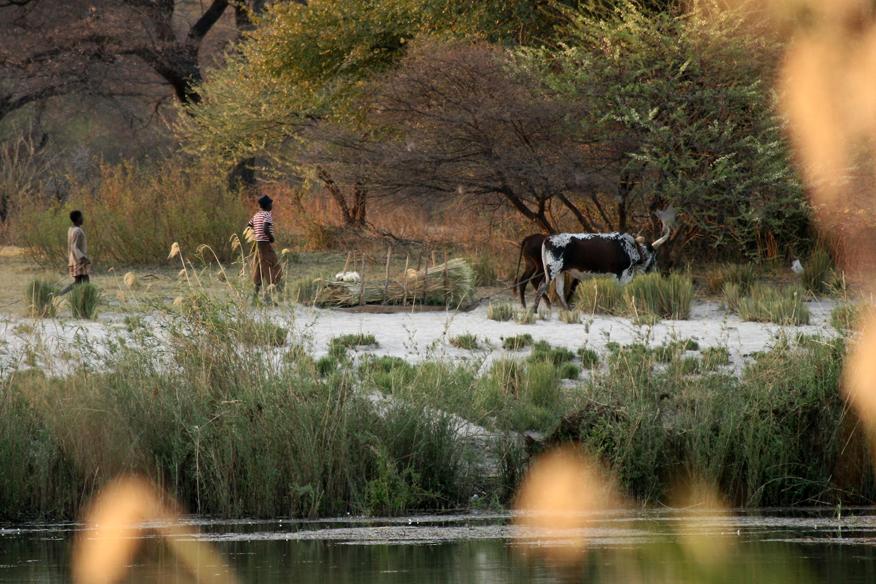 Rundu, N'Kwazi, view on Angola - panoramio.jpg