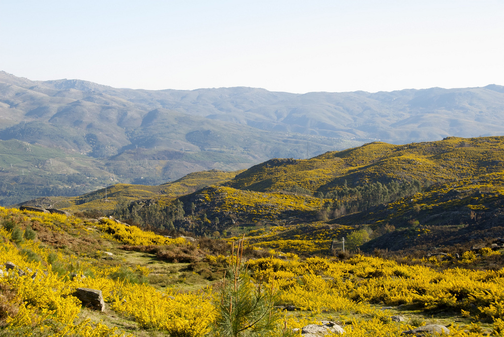 Parc national de Peneda-Gerês près de Porto - Photo de manjerix
