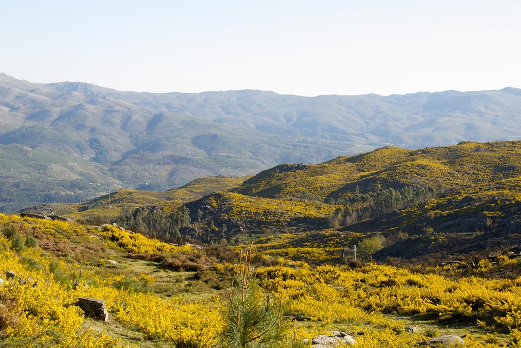 Parc national de Peneda-Gerês près de Porto - Photo de manjerix