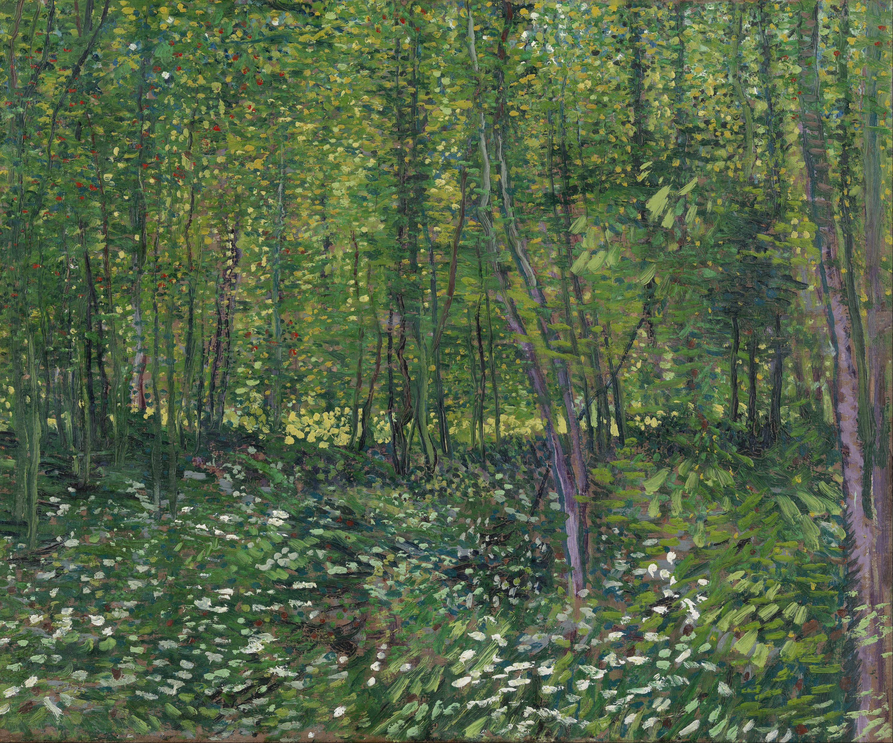File:Vincent van Gogh - Trees and undergrowth