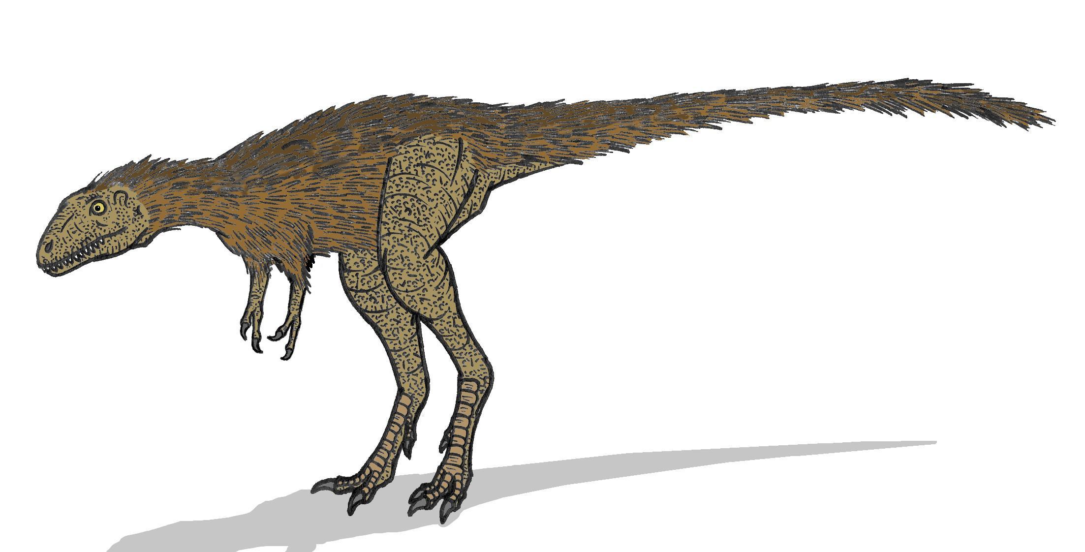 Tyrannosaurus  Wikipedia