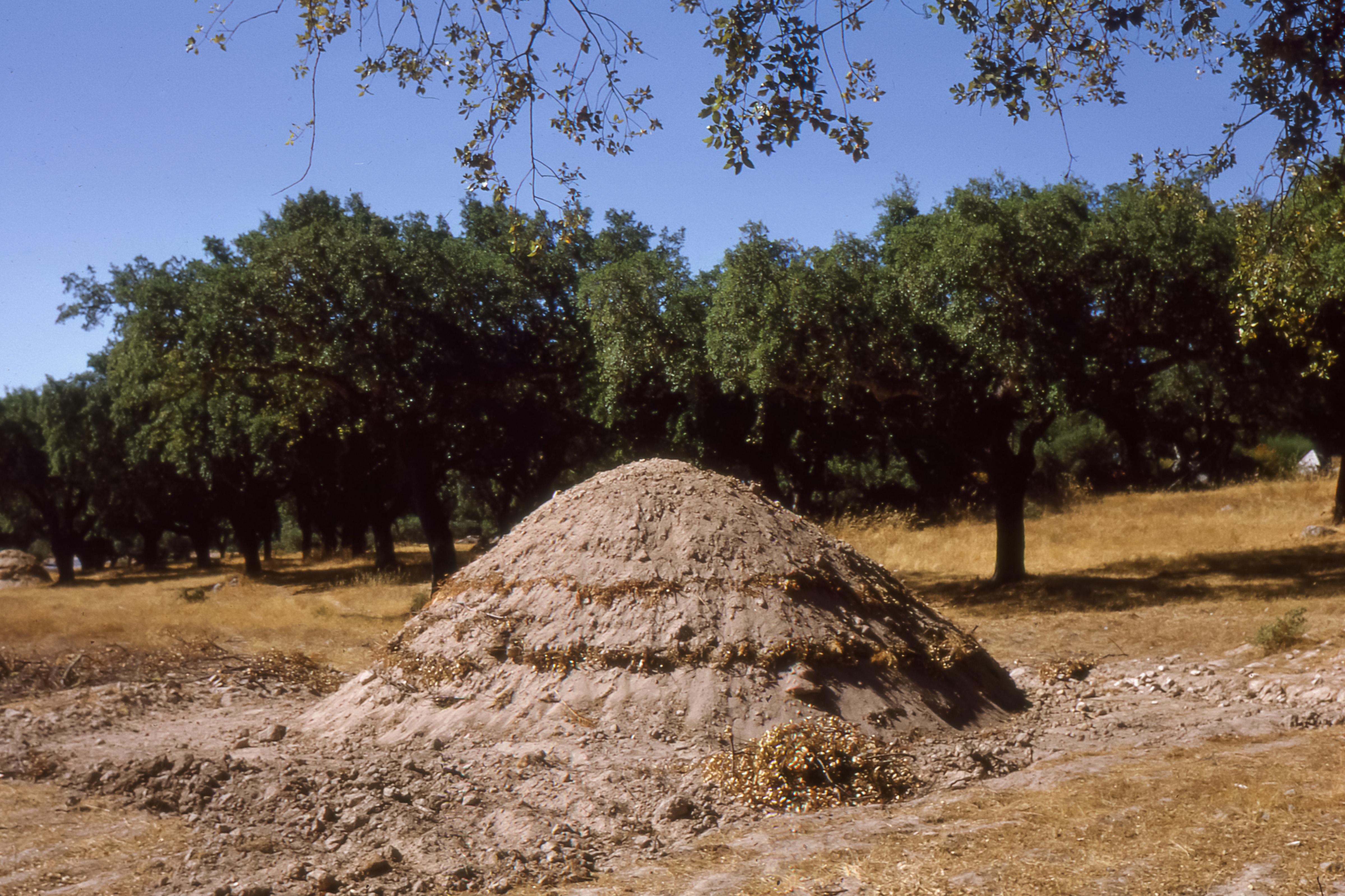 File vora fabrication de charbon de bois 2 1967 08 05 for Fabrication charbon de bois